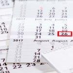 Terminkalender von Eckenfelder